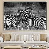 SADHAF Animal salvaje blanco y negro cebra africana lienzo sala de estar decoración de la sala A5 60x90cm