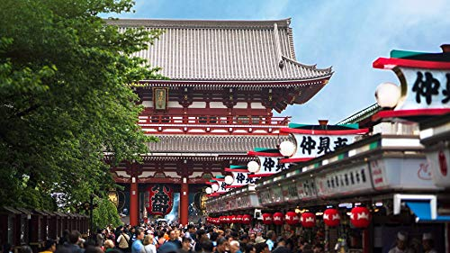 A taste of Tokyo: enjoy sights, smells, and surprises with a Japanese...
