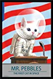 Trends International Fallout 4 - Mr. Pebbles - The First Cat in Space, 22.375' x 34', Black Framed Version