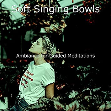 Ambiance for Guided Meditations