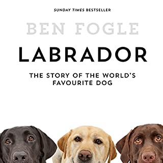Labrador: The Story of the World's Favourite Dog                   By:                                                                                                                                 Ben Fogle                               Narrated by:                                                                                                                                 Ben Fogle                      Length: 7 hrs and 24 mins     27 ratings     Overall 4.2