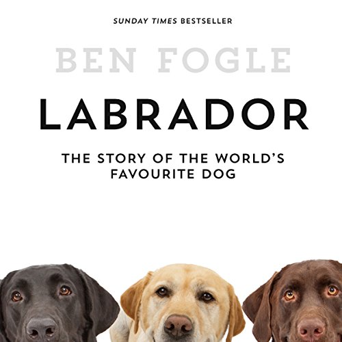 Labrador: The Story of the World's Favourite Dog audiobook cover art