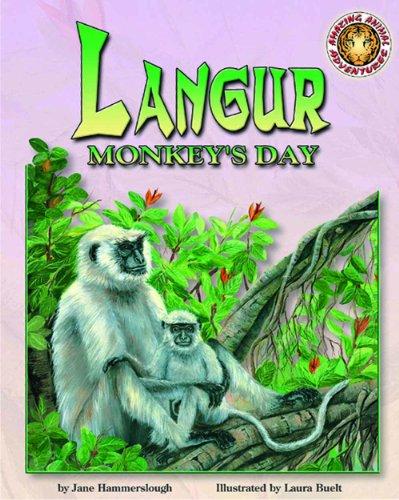 Langur Monkey's Day