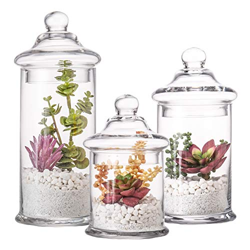 Diamond Star Set of 3 Glass Apothecary Jars with Lids Clear Bathroom Storage Organizer Canister Set for Qtips, Cotton Swabs, Cotton Balls, Bath Salts (H: 11', 8.5', 7.5', D: 5')