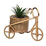 Vidal Regalos Planta en Macetero de Mimbre Forma Bicicleta 29 cm
