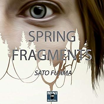 Spring Fragments - Single