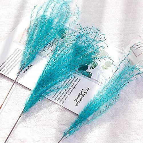 10 stks/partij Natuurlijke Gedroogde Bloem Riet Bloem Boeket voor Thuis Bruiloft Decoratie Hoge Kwaliteit Phragmite Bieslook Tak Foto Props