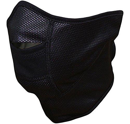 Masque de Ski Masque Protecteur Micropolaire et Membrane Coupe-vent Pro Therm Guard HR-174 (Noir, taille unique)