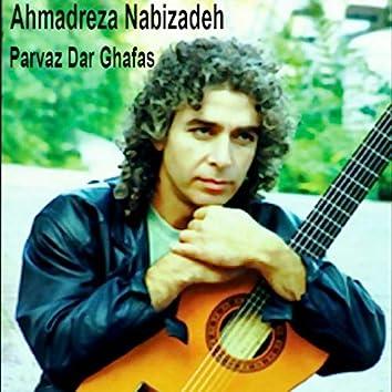 Parvaz Dar Ghafas (Flying in The Cage)