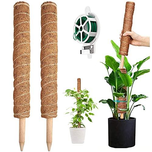 YAUNGEL Pflanzstab, 2 Stück 41CM Pflanzstäbe Kokos Moosstab für Monstera Pflanze Rankhilfen für Kletterpflanzen Natürlicher Pflanzenstütze mit 20M Drehbändern