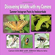 Discovering Wildlife with my Camera: Summer Instagram Posts by Imaloserdude (Canon EOS 80D with 100mm Macro lens)