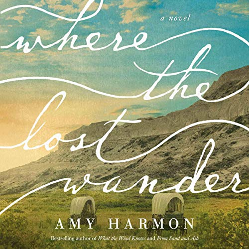 Where the Lost Wander audiobook cover art