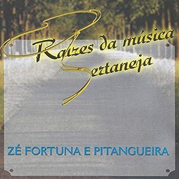 Raízes da música sertaneja