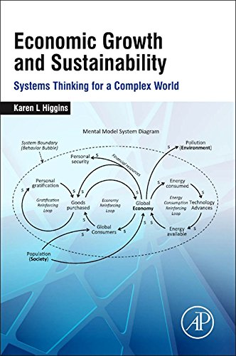 Economic Growth and Sustainability: Systems Thinking for a Complex World (English Edition)