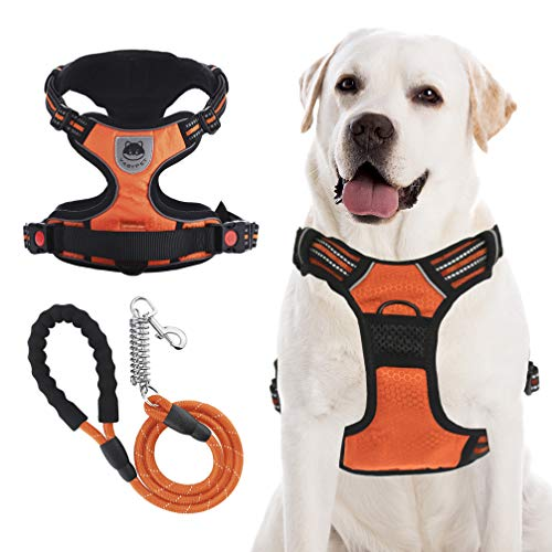VASTPET Dog Harness Leash Set, Reflective Adjustable Soft Padded No Pull Pet Vest Harness with Upgraded 5 FT Dog Leash