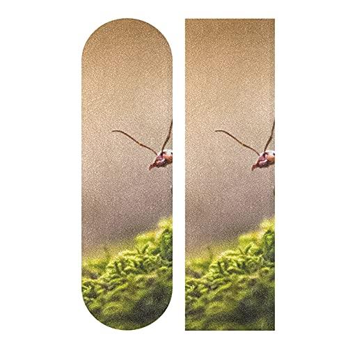 33,1 x 9,1 Zoll Sport Outdoor Longboard Grip Tape Leistungsstarkes und überraschendes Tierameisenmuster Wasserdichtes farbiges Skateboard Grip Tape für Tanzbrett Double Rocker Board Deck 1 Blatt