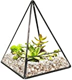 SunGrow Pyramid Tabletop Terrarium, 5 x 5 x 7 Inches, with Easy Access Opening, Durable Sodium Calcium Glass, Sturdy Brass Frame and Various DIY Projects, for Home and Office Decor, 1 Piece
