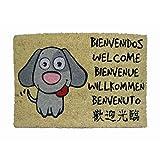 koko doormats, COLECCIÓN Perro, Felpudo Divertido y Original para Entrada de Casa, PVC, Coco, 40 x 60 cm (Perro Bienvenido)