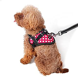 Emotional Support Animal Harness & Matching Leash Set for Small & Teacup Pet | Emotional Support Animal Patch | Four Colors | Three Sizes: 11