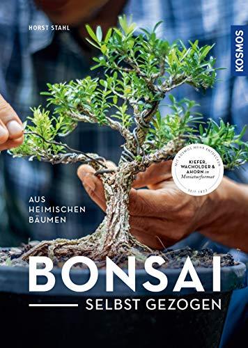 Bonsai selbst gezogen: - aus heimischen Bäumen
