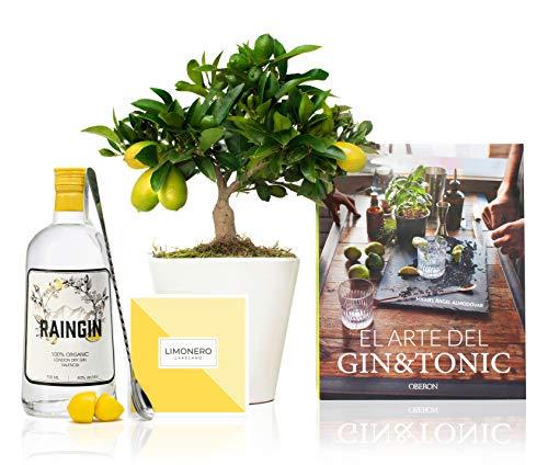"""Set Regalo Eco Gin con Limonero Lakeland 38 cm en maceta de 16 cm diámetro, libro """"El arte del Gin Tonic"""", botella de ginebra ecológica, cuchara cocktail y guía de cuidados entregado en caja de regalo"""