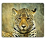 Luxlady Mousepads Jaguar e vissuto in America Centrale e sud America Image 22078022 Customized Art desktop laptop Gaming Mouse pad