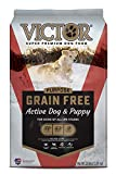 VICTOR Dog Food Purpose - Grain Free Active Dog &...