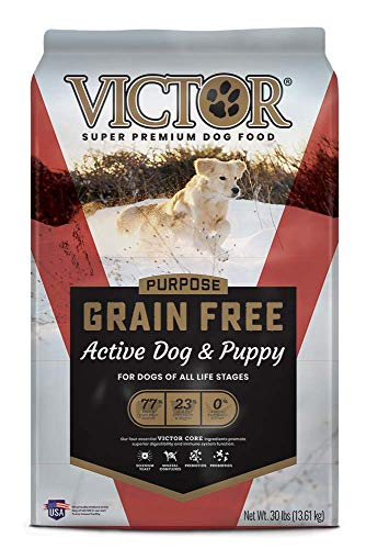 VICTOR Dog Food Purpose - Grain Free Active Dog & Puppy, Dry Dog Food...