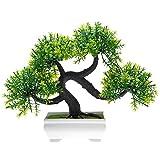 HuaYang Mini Asperges au pin -Topiary Mini arbre Artificielles avec Pot en mélamine...