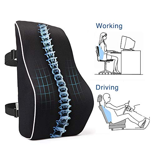 PROMIC Memory Foam Lumbar Support Back Cushion Ergonomic Lumbar Pillow Relieves Sciatica/Back Pain  with 3D Mesh Cover amp Adjustable Straps for Office Desk Chair Car Seat Couch and Sofa Black