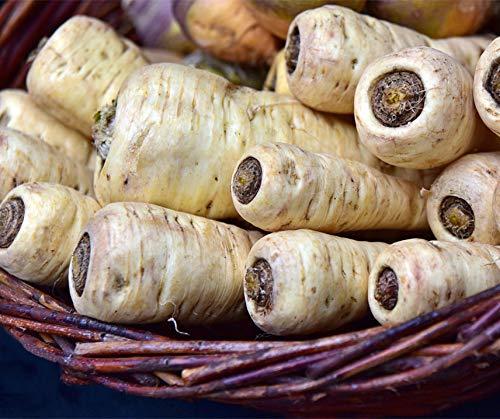 Bobby-Seeds Weitere Wurzeln und Knollen Pastinake, halblang Portion