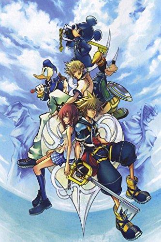 Kingdom Hearts 2 3 Sora Organization XIII 13 Nice Silk Fabric Cloth Wall Poster Print (36x24inch)