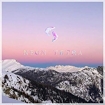Neon Tetra