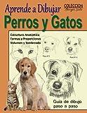 Aprende a Dibujar Perros y Gatos / Animales Domesticos: Volume 13 (Coleccion Borges Soto)