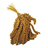 Millet Sprays 1Kg - Bird Treat