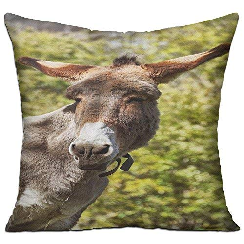 GFGKKGJFD27 Donkey Animal Rural Life Mule - Fundas de cojín de lona de 45 cm x 45 cm para sofá, regalos para adolescentes y niñas, dormitorios