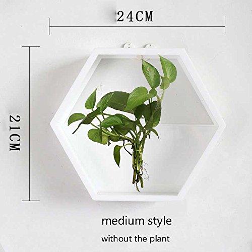 Bref Acrylique Chlorophytum Pot De Fleurs Maison Salon Parure Décoration Vases Mur Suspendu Radis Vert Hydroponique Plante Vase B