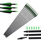 Tongtu 12pcs Fiberglass Arrows Hunting Archery Target Arrows for Recurve Bow Longbow Replacement