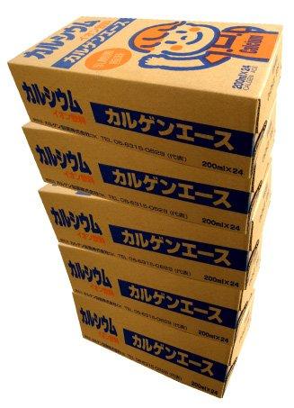 カルゲンエース カルシウムイオン飲料 5ケース(200mlx120本)