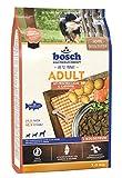 Bosch HPC Adult con Salmone Fresco e Patate Cibo Secco per Cani - 3000 g