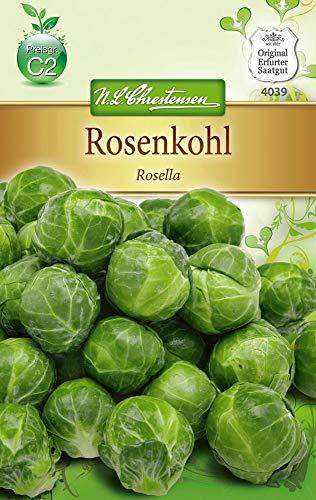 N.L. Chrestensen 4039 Rosenkohl Rosella (Rosenkohlsamen)