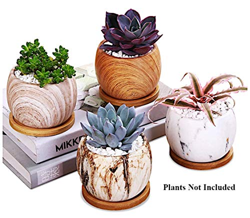 AppyHut Succulent Plant Pots 3.8 inch Round Marbling Ceramic Succulent Planter Cactus Pot Planter Pots Flower Pot Vase Container Decorative Pots for Plants with Drainage Hole &Bamboo Tray -Set of 4