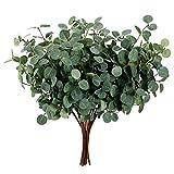 Tallos de eucalipto secos – 12 plantas artificiales verdes de imitación de hierba, hojas de eucalipto, relleno jarrones, plantas plásticoseda, falso algodón floral decorativo rama pampas tallo