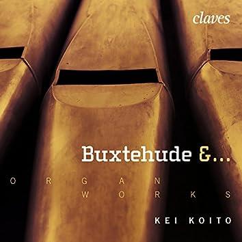 Buxtehude, Radeck, Strunck, Scheidemann, H & J. Praetorius, Weckmann, Tunder & J. S. Bach:  Works for Organ