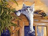 meaosy Puzzles Gato en el armario-Multicolor nclude animales, numeros, letras, regalo para ni?os Juguete Educativo Regalo de cumplea?os