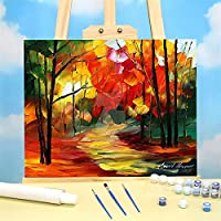 数字による小型パス着色塗装セットオイルペイント50 * 70キャンバス塗装手作りの手作り (Color : 42 colors 50x70cm)