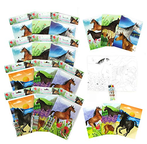 TINYMILLS Horse and Pony Coloring Book Set with 12 Coloring Books and 48 Crayons Horse Western Birthday Party Supplies Favor Bag Filler Carnival Prizes Rewards Stocking Stuffers
