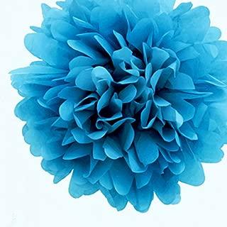 Best turquoise tissue paper pom poms Reviews