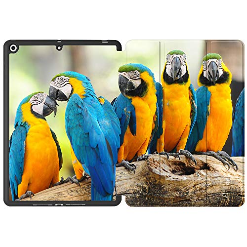 SDH Case for iPad 10.2 Inch 2019, Microfiber Lining Hard Back Shell with Auto Wake/Sleep, Slim Lightweight Trifold Smart Stand Cover for iPad 7th Generation 10.2' 2019,Cute Parrot7