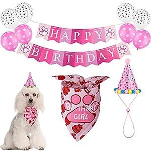 TCBOYING Dog Birthday Party Supplies, Dog Birthday Girl Bandana Hat Scarfs Flag Balloon with Cute Doggie Birthday Decorations(11-Piece Set)
